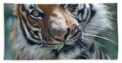 Malayan Tiger Bath Towel