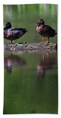 Male And Female Mallard Ducks Anas Hand Towel