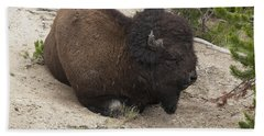 Hand Towel featuring the photograph Male Buffalo At Hot Springs by Belinda Greb