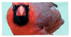 Male Cardinal Portrait Hand Towel