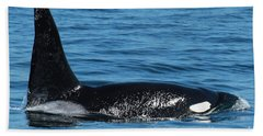 Bath Towel featuring the photograph Lonesome George Ca165  Male Orca Killer Whale In Monterey Bay California 2013 by California Views Mr Pat Hathaway Archives