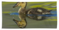 Mallard Duck Chick Swimming In Marsh Hand Towel