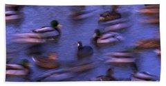 Mallard Ducks Swimming Hand Towel