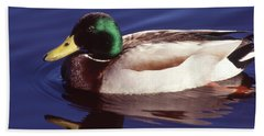 Mallard In The Mirror Hand Towel