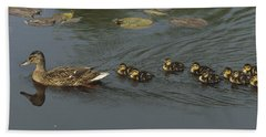 Mallard Mother With Ducklings Hand Towel
