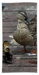 Mama Duck And Ducklings Hand Towel by Pamela Walton