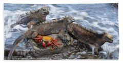 Marine Iguana Trio And Sally Lightfoot Hand Towel