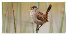 Marsh Wren Hand Towel by Doug Herr