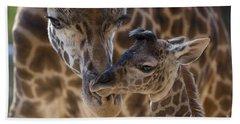 Bath Towel featuring the photograph Masai Giraffe And Calf by San Diego Zoo