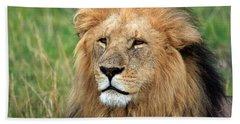 Masai Mara Lion Portrait    Hand Towel