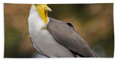 Masked Lapwing Hand Towel by Carolyn Marshall