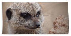 Meerkat 7 Hand Towel