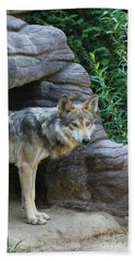 Mexican Wolf #2 Hand Towel