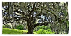 Middleton Place Oak  Hand Towel by Allen Beatty