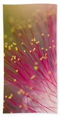 Mimosa Blossom 3 Hand Towel by Dan Wells