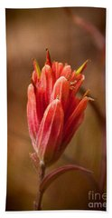 Bath Towel featuring the photograph Miniature Indian Paintbrush by Steven Reed