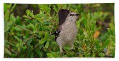 Mockingbird In Tree Hand Towel