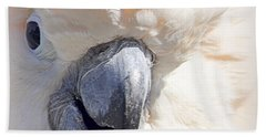 Moluccan Close Up Hand Towel by AJ  Schibig