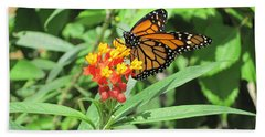 Monarch At Rest Hand Towel