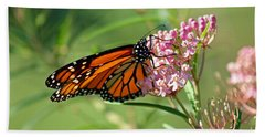 Monarch Butterfly On Milkweed Hand Towel
