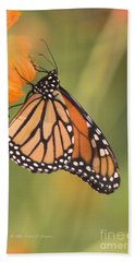 Monarch Butterfly Hand Towel