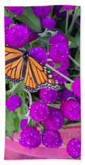 Monarch On Bachelor Buttons Hand Towel