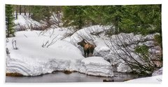 Hand Towel featuring the photograph Moose In Alaska by Amanda Smith