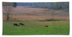 Morning Deer In Cades Cove Hand Towel