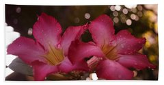 Hand Towel featuring the photograph Morning Sunshine And Rain by Miguel Winterpacht
