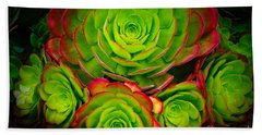 Morro Bay Echeveria Bath Towel
