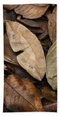 Moth Camouflaged Against Leaf Litter Bath Towel