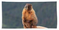 Mother Marmot Hand Towel
