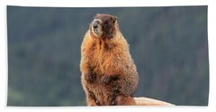 Mother Marmot Bath Towel