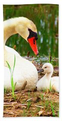 Mother Swan And Baby Hand Towel