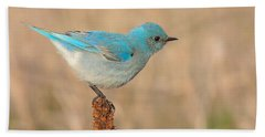 Mountain Bluebird Bath Towel