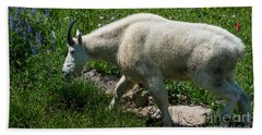 Mountain Goat And Wildflowers Bath Towel