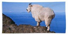 Mountain Goat On Klahane Ridge Hand Towel by Jeff Goulden