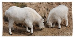 Mountain Goats At The Salt Lick Bath Towel by Vivian Christopher