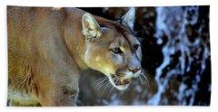 Mountain Lion Hand Towel by Deena Stoddard