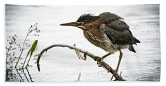 Mr. Green Heron Bath Towel by Cheryl Baxter