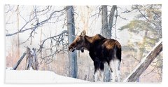 Mr. Moose Bath Towel by Cheryl Baxter