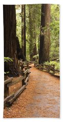 Muir Woods Trail Bath Towel
