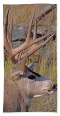 Mule Deer Bath Towel by Lynn Sprowl