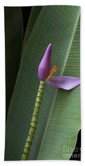 Musa Ornata - Pink Ornamental Banana Flower - Kepaniwai Maui Hawaii  Bath Towel
