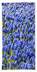 Muscari Early Magic Hand Towel