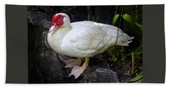 White Muscovy Duck Bath Towel by Venetia Featherstone-Witty