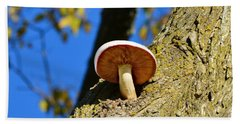 Bath Towel featuring the photograph Mushroom In A Tree by Ally  White