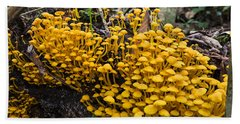 Mushrooms On Tree Trunk Panguana Nature Bath Towel