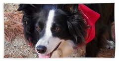 Bath Towel featuring the photograph Female Border Collie by Eunice Miller