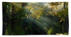 Mystical Hand Towel by Dianne Cowen